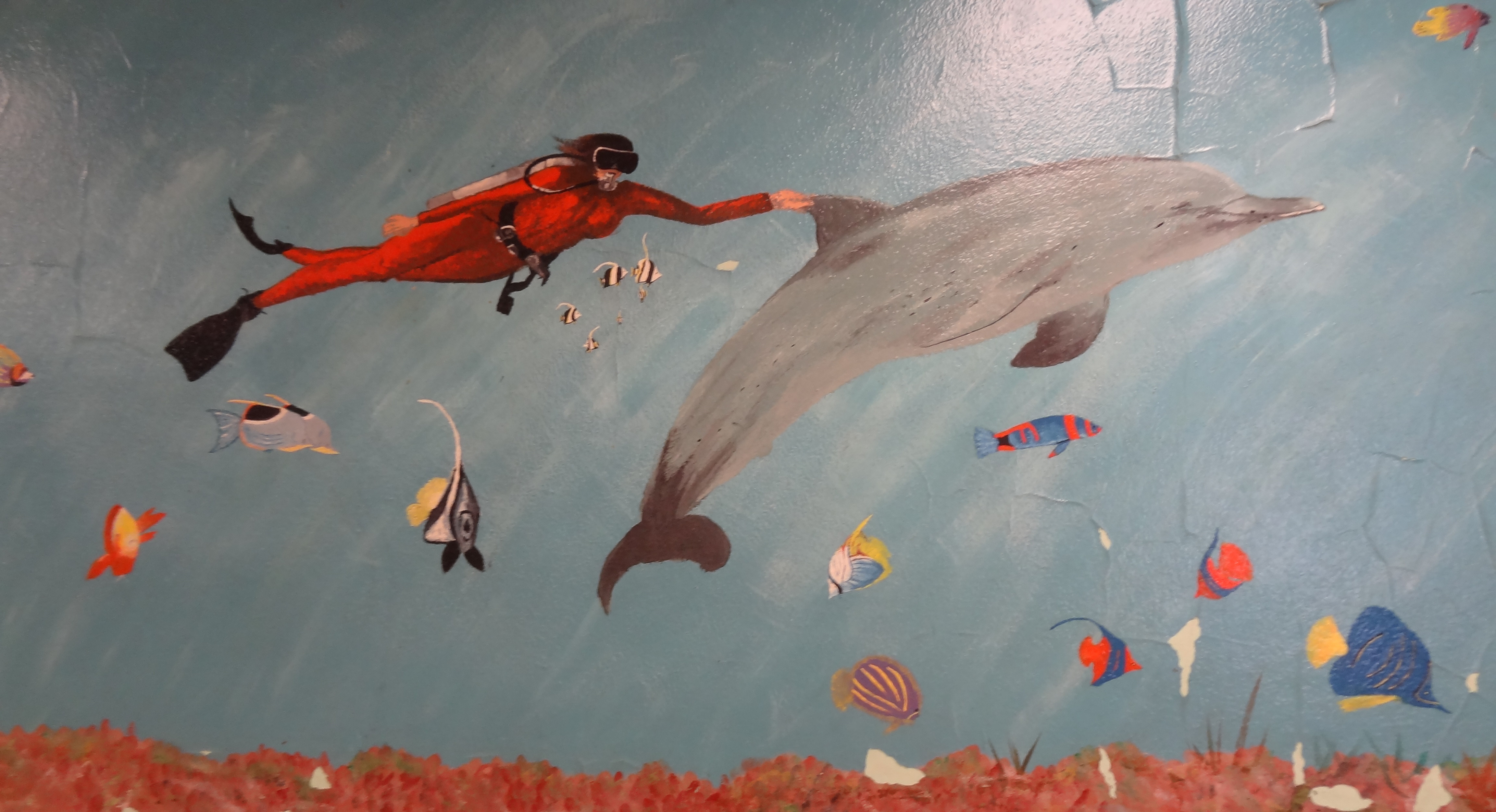 Scuba diver and dolphin, Montclair Elementary